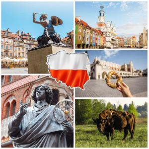 Kurs polskiego online